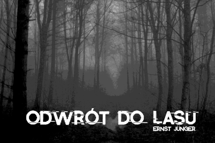 Ernst Jünger, las